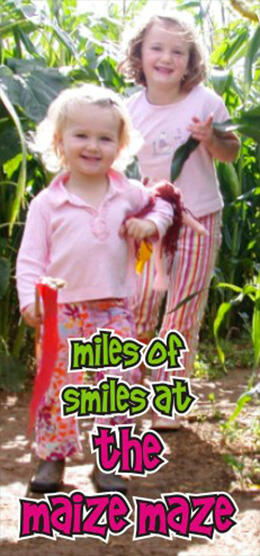 miles of smiles at the Maize Maze