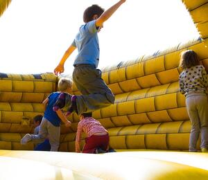Fosseway Fun Farm Bouncy Castle